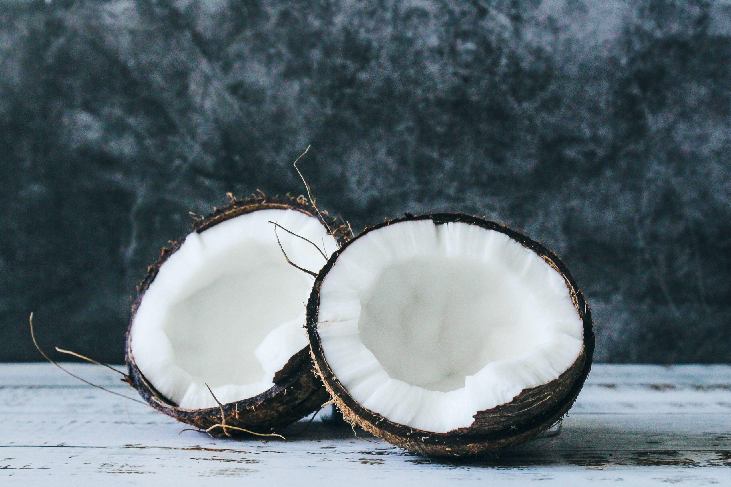 Charbon végétal de noix de coco