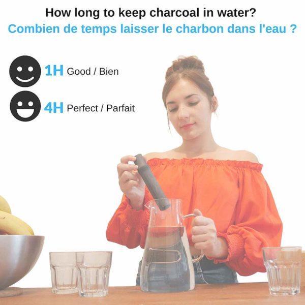 Binchotan charbon