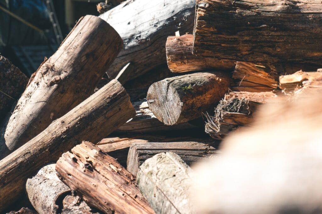 Récolter le bois pour faire du binchotan